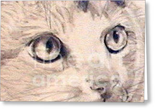 Kitten Prints Greeting Cards - Somewhere in Time Greeting Card by Susan A Becker