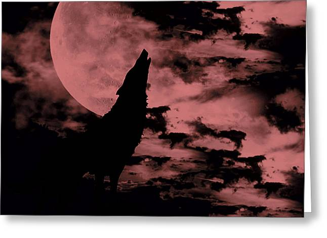 Photographs Digital Art Greeting Cards - Song of the Wolf  Greeting Card by Lourry Legarde