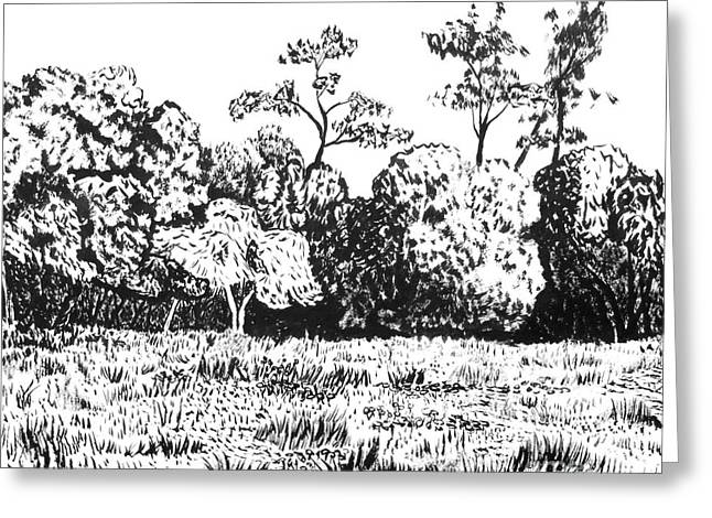 Sonoma County Drawings Greeting Cards - Sonoma County Greeting Card by Brian  Commerford