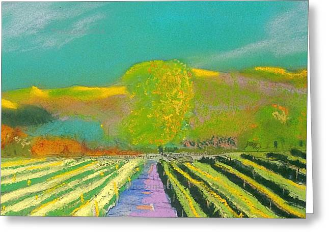 Napa Valley Vineyard Pastels Greeting Cards - Sonoma Vineyard 4 Greeting Card by Anthony George