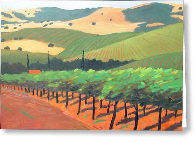 Rolling Hills Vinyards Greeting Cards - Sonoma Vinyard Greeting Card by Gary Coleman