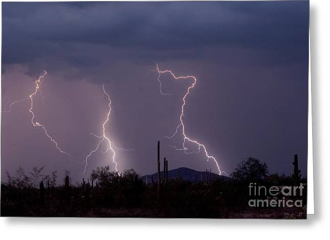 Lightning Photography Photographs Greeting Cards - Sonoran Storm Greeting Card by James BO  Insogna