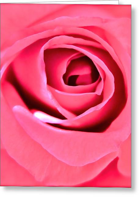Floral Photographs Greeting Cards - Soul Searching Greeting Card by Gwyn Newcombe