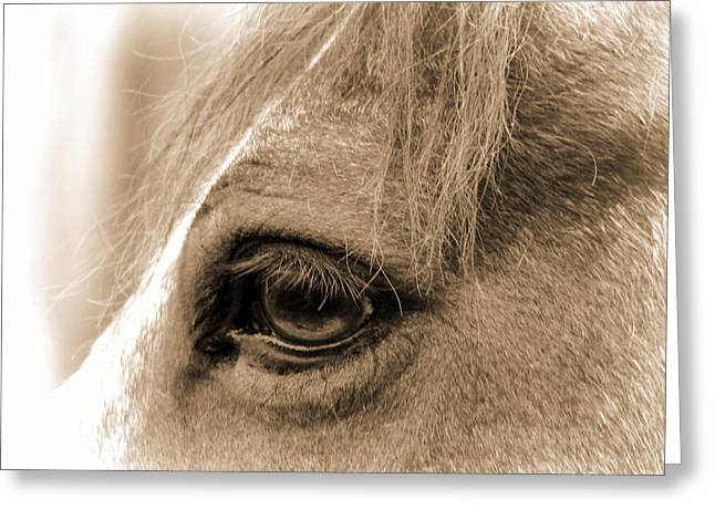 Eyelash Greeting Cards - Soul Views-Wise One Greeting Card by Nada Frazier
