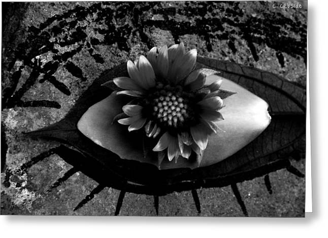 Mindful Greeting Cards - Soul Window Greeting Card by Chris Berry