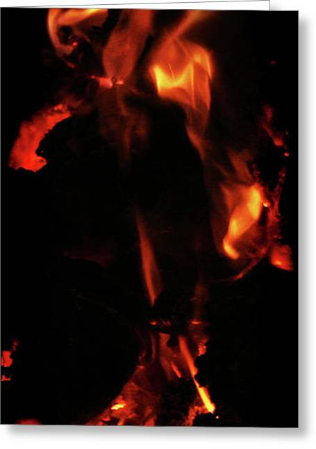 Soft And Subtle Greeting Cards - Soulbird in flames Greeting Card by Li   van Saathoff