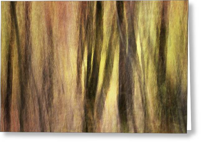 Kinetic Greeting Cards - Sourwoods in Autumn Abstract Greeting Card by Rob Travis