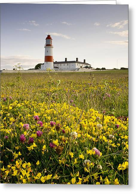 Ground Level Greeting Cards - Souter Lighthouse South Shields Marsden Greeting Card by John Short