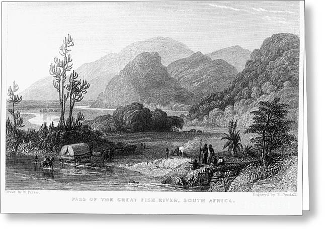 Drawn Landscape Greeting Cards - South Africa, 1841 Greeting Card by Granger