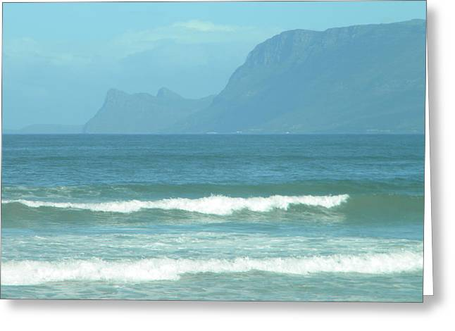 Simons Town Greeting Cards - South Africa Greeting Card by Lisa Gardella