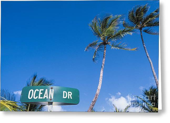 Gulf Coast States Greeting Cards - South Beach Greeting Card by Juan  Silva
