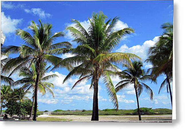 Recently Sold -  - Ocean Vista Greeting Cards - South Beach Miami Greeting Card by Molly McPherson