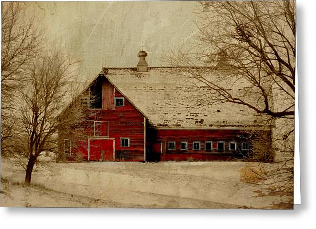 Country Shed Greeting Cards - South Dakota Barn Greeting Card by Julie Hamilton
