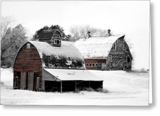 Country Shed Greeting Cards - South Dakota Farm Greeting Card by Julie Hamilton