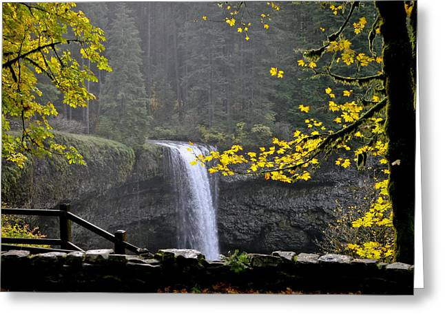 Silver Falls Greeting Cards - South falls of Silver Creek Greeting Card by Albert Seger