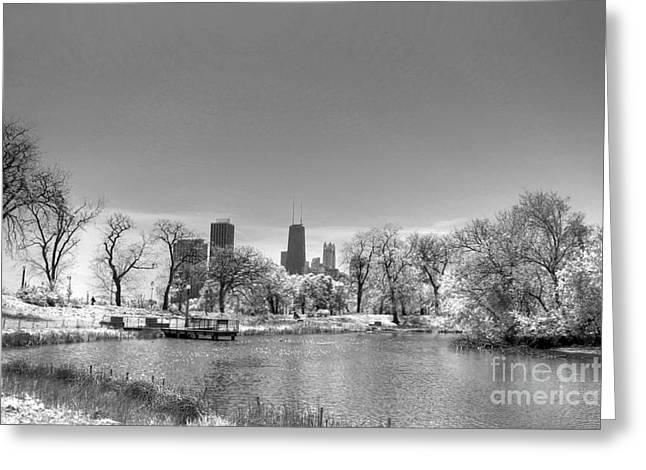 Lincoln Park Lagoon Greeting Cards - South From Lincoln Park Lagoon Greeting Card by David Bearden