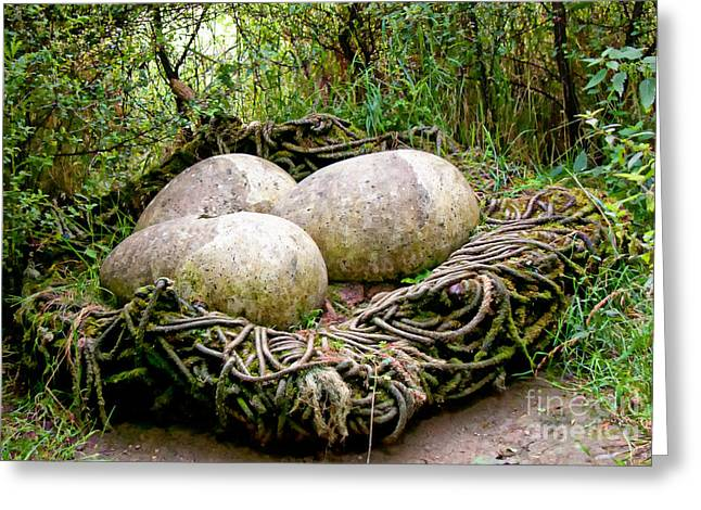Egg Sculpture Greeting Cards - South Landing - Giant Nest Greeting Card by David  Hollingworth