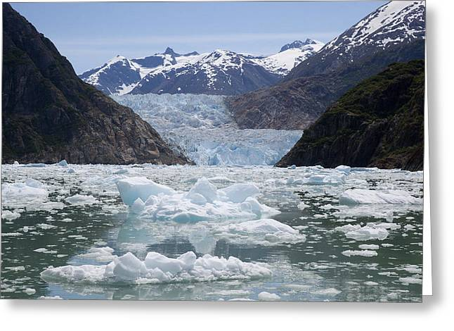 Bergy-bit Greeting Cards - South Sawyer Glacier And Bay Full Greeting Card by Matthias Breiter