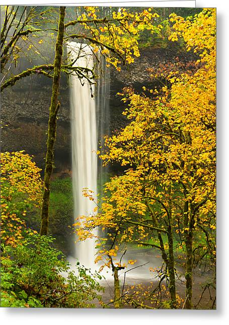 Silverton Greeting Cards - South Silver Falls Greeting Card by Alvin Kroon