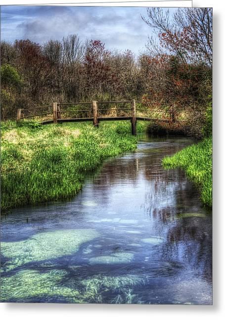 Babylon Village Greeting Cards - Southards Pond in Spring Greeting Card by Vicki Jauron
