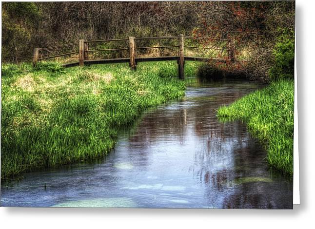 Southards Pond in Spring Greeting Card by Vicki Jauron