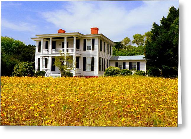 Nc Houses Greeting Cards - Southern Charm Greeting Card by Karen Wiles