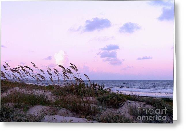 Sea Oats Greeting Cards - Southern Shoreline Greeting Card by Al Powell Photography USA
