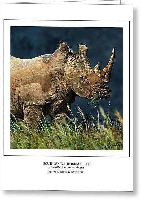 Rhinocerotidae Greeting Cards - Southern White Rhino Greeting Card by Owen Bell
