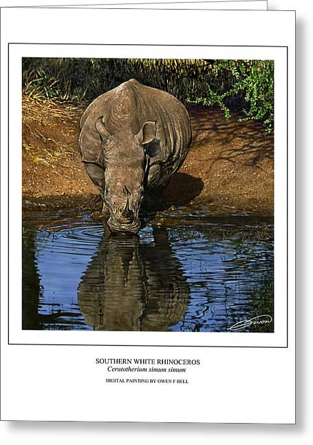 Rhinocerotidae Greeting Cards - Southern White Rhinoceros at Waterhole Greeting Card by Owen Bell