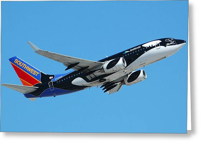 737 Greeting Cards - Southwest Boeing 737 Shamu at Sky Harbor April 13 2006 Greeting Card by Brian Lockett