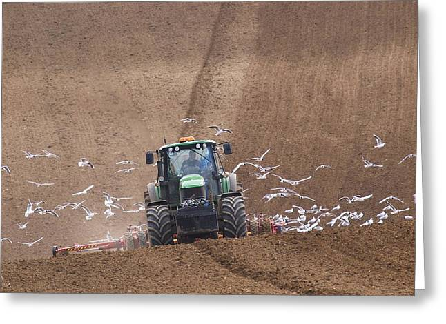Sowing Greeting Cards - Sowing A Cereal Crop In Mid March Greeting Card by Adrian Bicker