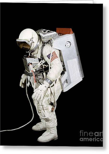 Spacesuit Used By Gemini Viii Greeting Card by Stocktrek Images