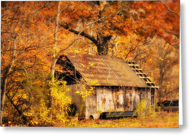 Fall Photographs Greeting Cards - Spare Tire Greeting Card by Kathy Jennings