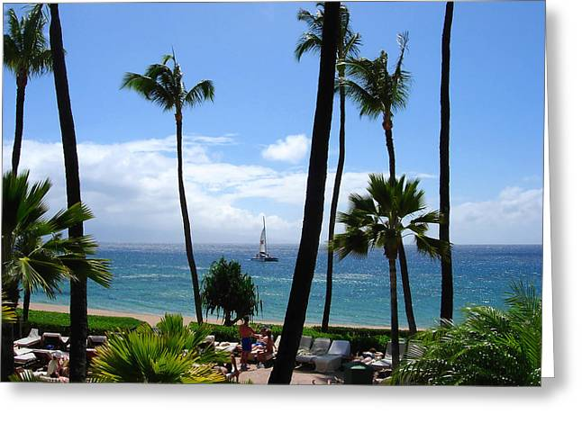 Blue Sailboats Greeting Cards - Sparkling Sea at Kaanapali Maui Greeting Card by Connie Fox