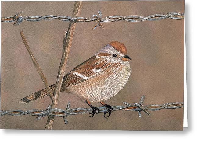Sparrow Mixed Media Greeting Cards - Sparrow Greeting Card by Linda Hiller