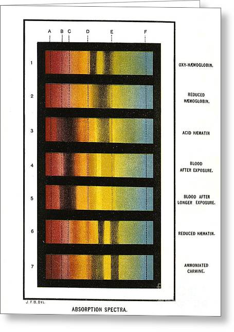 Spectroscopic Greeting Cards - Spectra Chart, Blood Samples, 1894 Greeting Card by Science Source