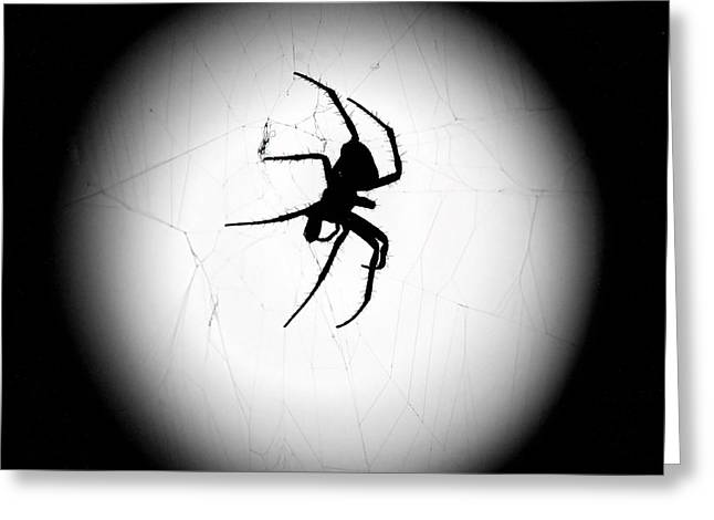Val Armstrong Greeting Cards - Spider in the Moon Greeting Card by Val Armstrong