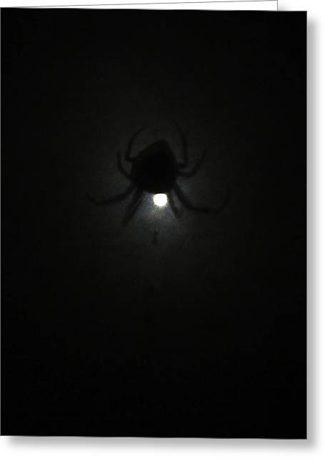 Spider In The Moonlight Greeting Card by Kym Backland