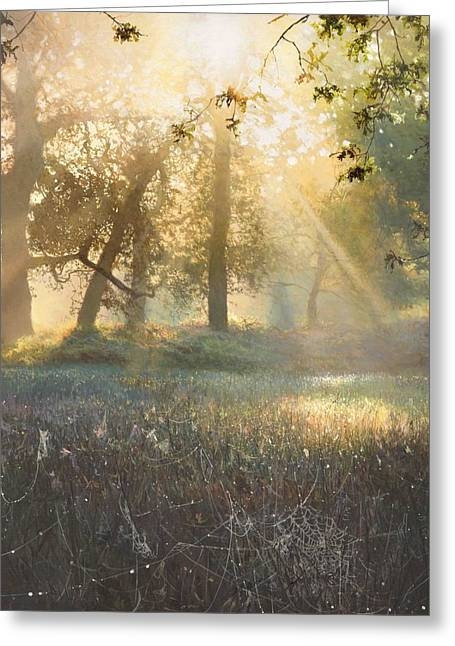 Sun Rays Paintings Greeting Cards - Spiders Diamonds Greeting Card by Helen Parsley