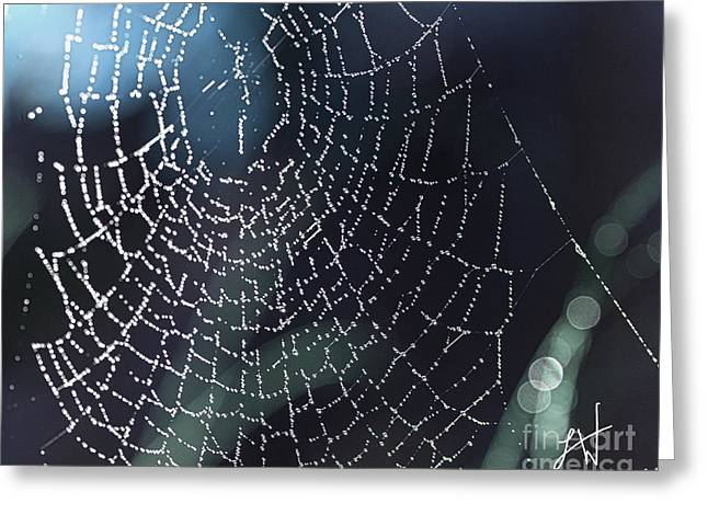Spiderweb Blues Greeting Card by Artist and Photographer Laura Wrede