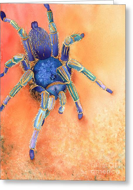 Costa Paintings Greeting Cards - Spidy Greeting Card by Tracy L Teeter