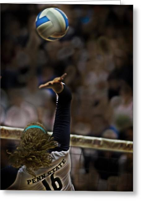Nittanylions Greeting Cards - Spiked Greeting Card by Tom Gari Gallery-Three-Photography