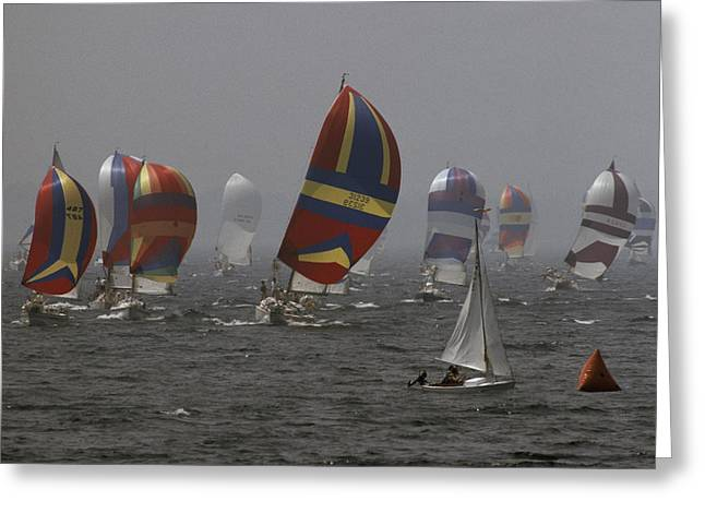 Wind In The Sails Greeting Cards - Spinnakered Boats Race Greeting Card by Phil Schermeister