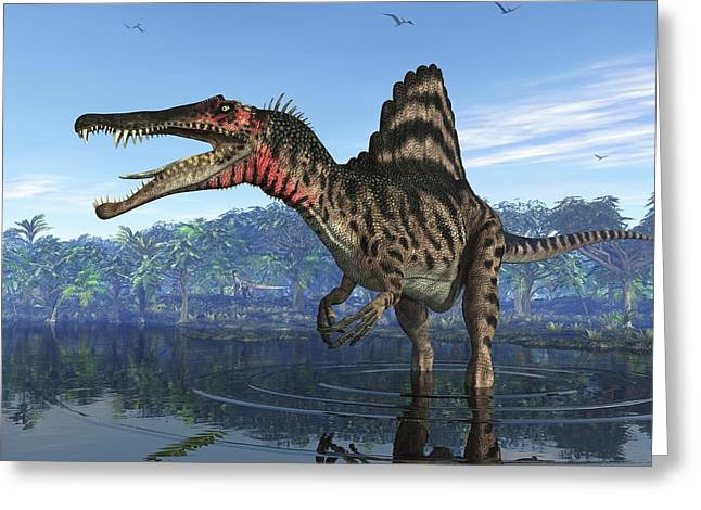 Zoology Greeting Cards - Spinosaurus Dinosaur, Artwork Greeting Card by Walter Myers