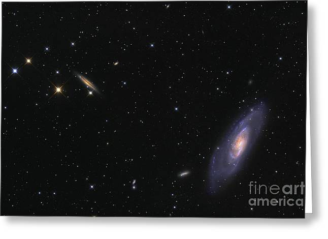 M106 Greeting Cards - Spiral Galaxy Messier 106 Greeting Card by Roth Ritter