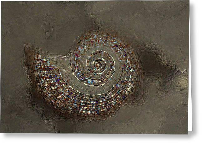 Spiral Shells Greeting Cards - Spiral Textures Greeting Card by Linda Sannuti