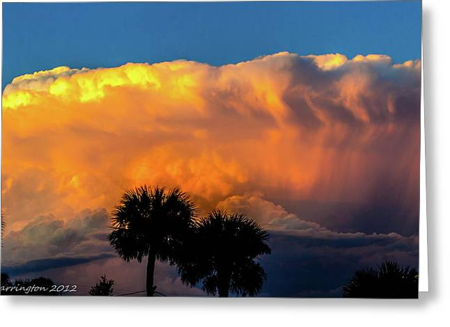 Cedar Key Greeting Cards - Spirit in the Clouds Greeting Card by Shannon Harrington
