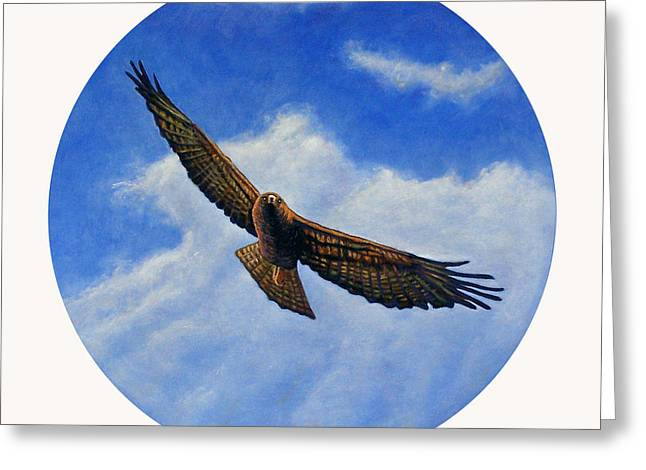 Soaring Falcon Greeting Cards - Spirit in the Wind Greeting Card by Brian  Commerford