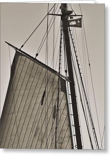 Historic Schooner Greeting Cards - Spirit of South Carolina Schooner Sailboat Sail Greeting Card by Dustin K Ryan