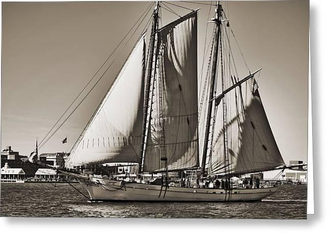 Historic Schooner Greeting Cards - Spirit of South Carolina Schooner Sailboat Sepia Toned Greeting Card by Dustin K Ryan